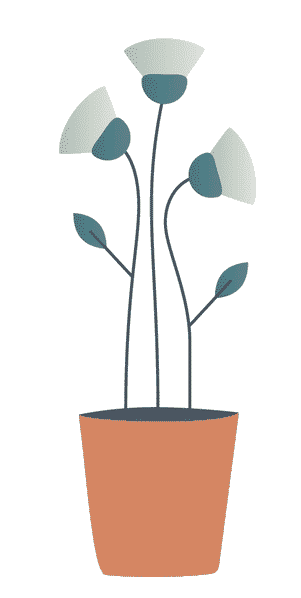 Plants - SEO growth concept